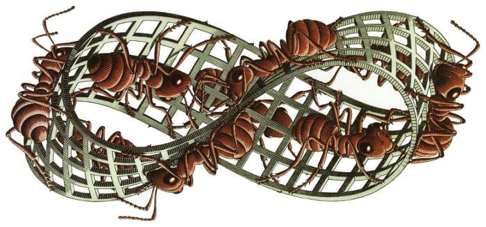 """A imagem em movimento escolhida para ilustrar o website é reprodução da gravura """"Banda de Möbius 2"""" criada pelo artista holandes Maurits Cornelis Escher em 1963. Inspirado no objeto topologico inventado em 1858 pelo astrônomo e matemático alemão August Ferdinand Möbius, Escher reproduziu a banda (também chamada de fita ou laço) numa estrutura espacial de superfície infinita incluindo formigas para figurar a impossibilidade de representar o dentro e fora como espaços antagônicos."""